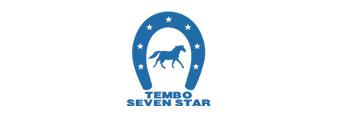 Tembo Seven Star
